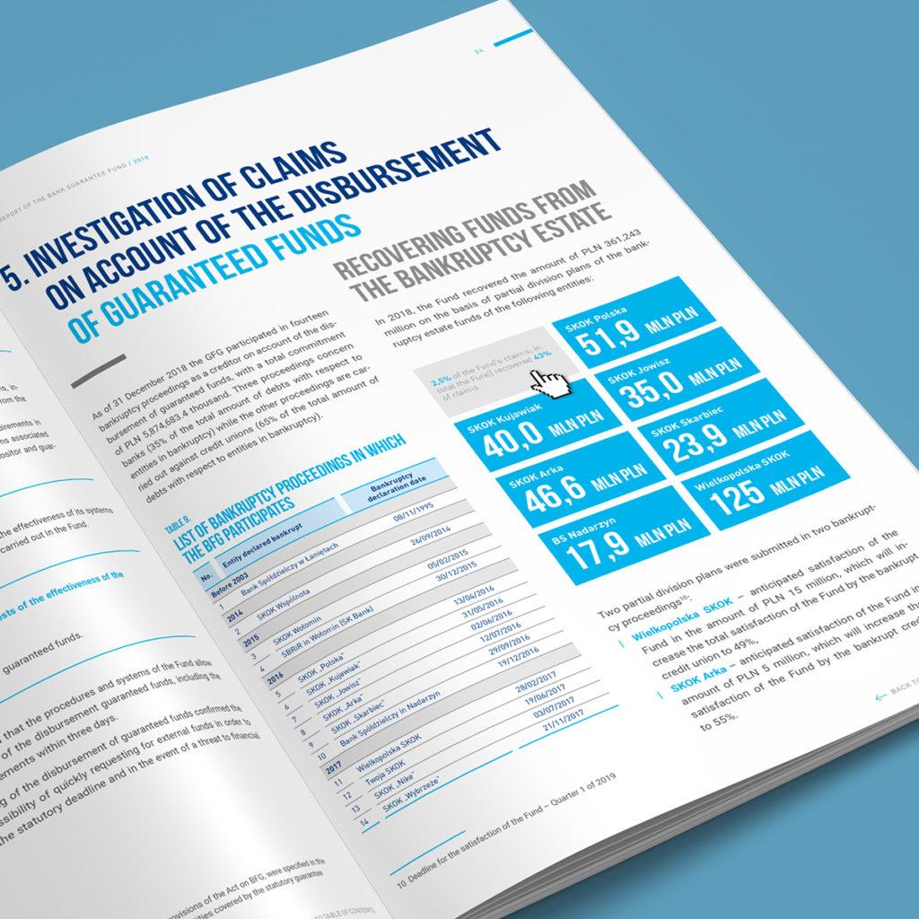 Interaktywny raport roczny BFG